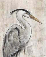 Grey Heron I Fine Art Print