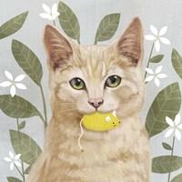 Pet Life II Fine Art Print