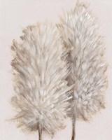 Pampas Grass III Fine Art Print