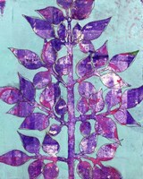 Purple Planta II Fine Art Print