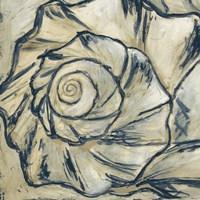 Navy Seashell Spiral I Fine Art Print