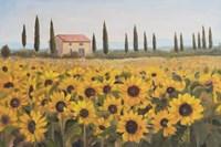 Tuscan Memories I Fine Art Print