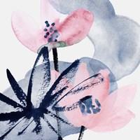Pink Water Lilies I Fine Art Print