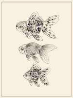 Goldfish II Fine Art Print