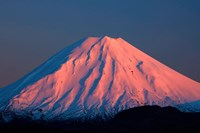 Alpenglow On Mt Ngauruhoe At Dawn, Tongariro National Park, New Zealand Fine Art Print