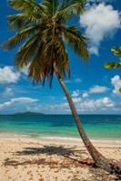 Cramer Park Beach, St Croix, US Virgin Islands Fine Art Print