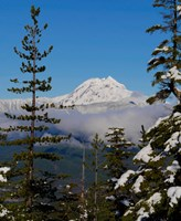 Mount Garibaldi From The Chief Overlook At The Summit Of The Sea To Sky Gondola Fine Art Print