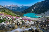 British Columbia, Meltwater Stream Flows Past Wildflowers Into Upper Joffre Lake Fine Art Print