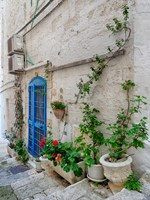 Italy, Puglia, Brindisi, Itria Valley, Ostuni Blue Door And Potted Plants Fine Art Print