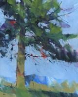 Gilfach Pine Fine Art Print