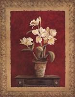 "Bold and Beautiful II by Charlene Winter Olson - 22"" x 28"""