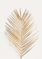Palm Leaf Gold Framed Print