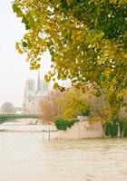Notre Dame 2 Fine Art Print