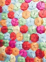 Portugal Umbrella 2 Fine Art Print