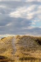 Dunes Trail Fine Art Print