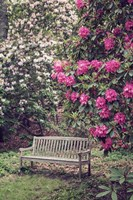 Rest Among The Flowers Fine Art Print