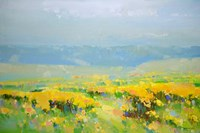 Yellow Valley Fine Art Print