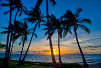 Sunset And Silhouetted Palm Trees, Kihei, Maui, Hawaii Fine Art Print