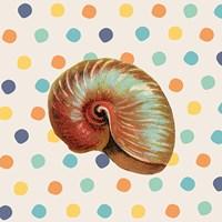 Confetti Shell Fine Art Print