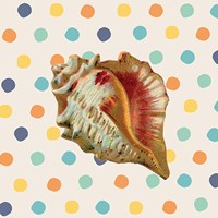 Confetti Shell III Fine Art Print