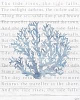 Tide Rises Fine Art Print