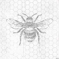 Grey Bee Fine Art Print