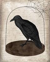 Raven Jar Fine Art Print