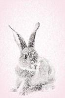 Pink Bunny I Fine Art Print