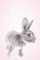 Pink Bunny II Fine Art Print