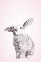 Pink Bunny III Fine Art Print