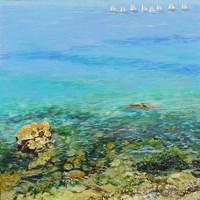 Clear Water Fine Art Print