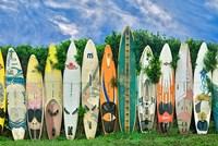 Surfboards Fine Art Print