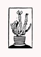 Black Cactus Fine Art Print
