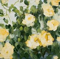 Yellow Roses II Fine Art Print