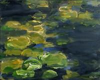 Lilypad Pond Fine Art Print