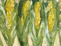 Corn Fine Art Print