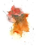 Fall Leaves IV Fine Art Print