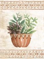 Southwest Terracotta Succulents I Fine Art Print