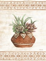 Southwest Terracotta Succulents II Fine Art Print