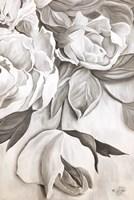Rosie Fine Art Print