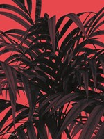 Tropical Leaf Fine Art Print