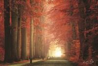 Way to Red Fine Art Print
