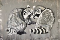 Two Raccoons Fine Art Print
