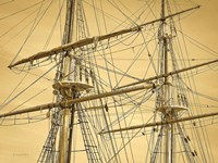 Crows Nest Fine Art Print