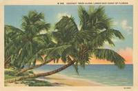 Florida Postcard III Fine Art Print