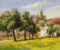 California Spring Fine Art Print