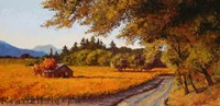 Dry Creek Autumn Fine Art Print
