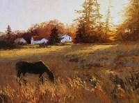 Russet Fields Fine Art Print