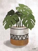 Monstera Plant Fine Art Print