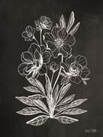 Vintage Chalkboard Flowers Fine Art Print